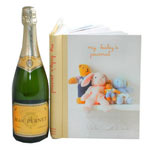 Champagne and Baby Diary