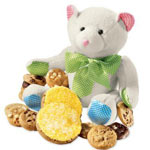 Baby's Buddy Bear with Pink Cookies